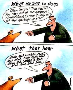 what people say what dogs hear